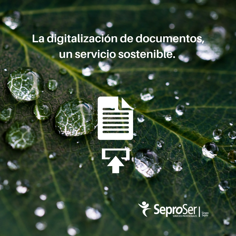 La digitalización de documentos, un servicio sostenible.
